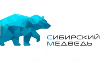 Вход в личный кабинет интернет-провайдера Сибирский медведь