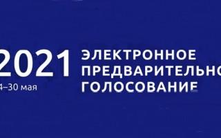 Регистрация в предварительном голосовании 2021 по отбору кандидатов в депутаты ГосДумы