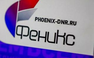 Как войти в личный кабинет Феникс ДНР по номеру телефона с мобильного