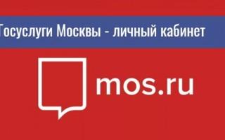 Как зарегистрироваться и войти на портал Госуслуг Москвы PGU.MOS.RU