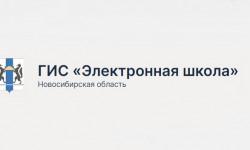 Как зарегистрироваться и войти в личный кабинет Электронной школы Новосибирской области