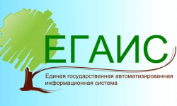 Как войти в личный кабинет системы ЕГАИС Лес для учета древесины и сделок с ней